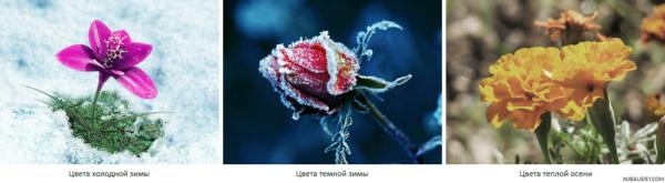 сравнение цветов темной зимы, холодной зимы, теплой осени