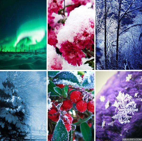 палитра темной глубокой зимы