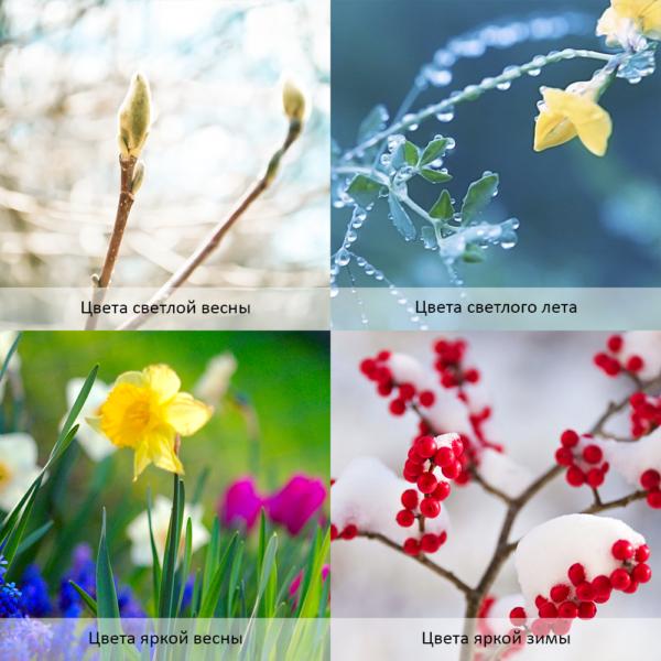 Влияние теплой весны на четыре цветотипа