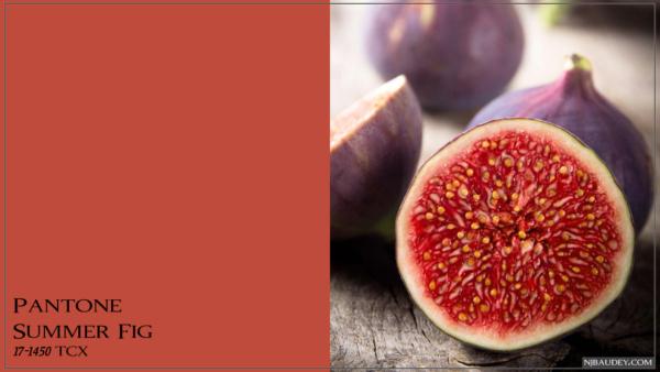 Summer Fig Летний инжир