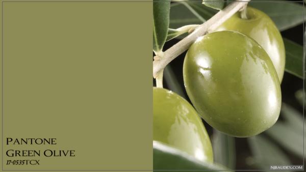 Green Olive Зеленая оливка
