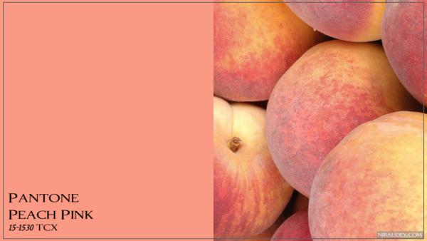 Peach Pink Персиковый розовый
