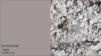 PANTONE 16-3802 Ash Пепел