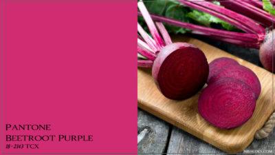 PANTONE 18-2143 Beetroot Purple Свекольно-фиолетовый