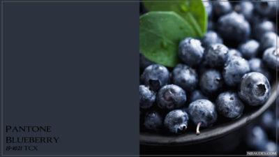 PANTONE 19-4021 Blueberry Черника