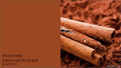 PANTONE 18-1345 Cinnamon Stick Палочка корицы