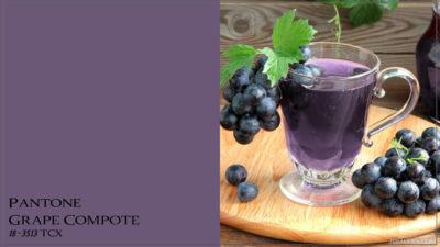 PANTONE 18-3513 Grape Compote Виноградный компот