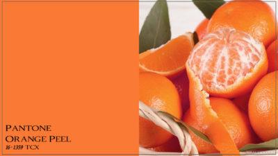 PANTONE 16-1359 Orange Peel Апельсиновая корка