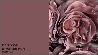 PANTONE 18-1512 Rose Brown Розово-коричневый