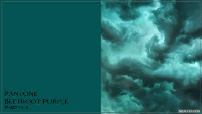 PANTONE 19-5217 Storm Шторм