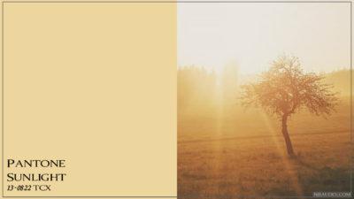 PANTONE 13-0822 Sunlight Солнечный свет