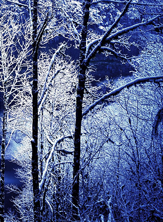 темная зима глубокая зима