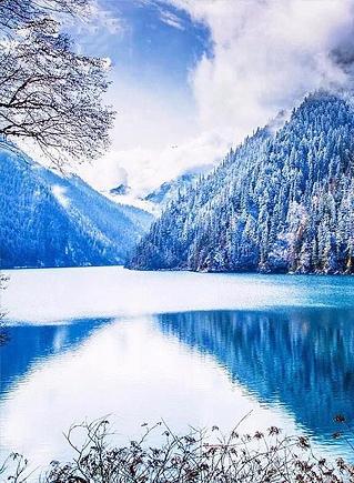 цвета холодной зимы в природе